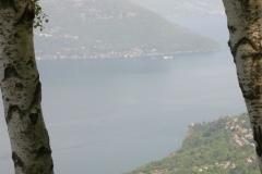 Alpe San Michele 2008