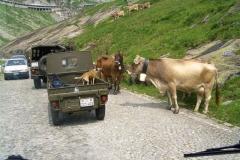 Alta Valle Leventina 2006