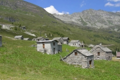 Bosco Gurin 2007